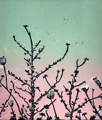 polaroidblog