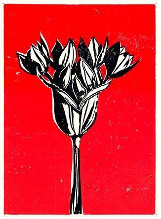 flowerRedBlog